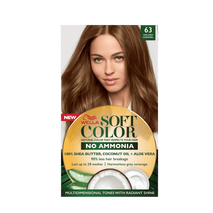 Soft Color, Natural hair color without Ammonia and with 100% Natural Ingredients: Golden Caramel-Zomorod.com