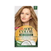 Soft Color Natural hair color without Ammonia and with 100% Natural Ingredients: Light Blonde-Zomorod.com